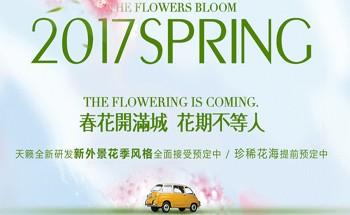 春季黄金档期&全新花季风格限时抢订中_天籁婚纱摄影