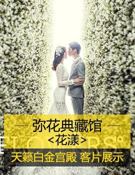 【天籁白金宫殿】弥花典藏内景客片展示