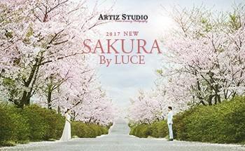 《SAKURA》 by LUCE系列_韩国艺匠Artiz studio